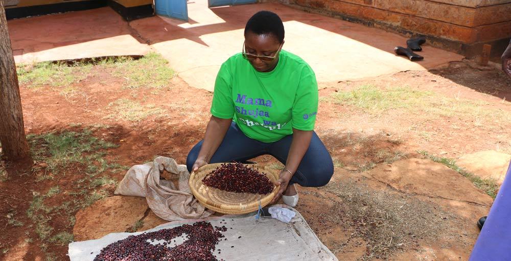 smallholder-farmers