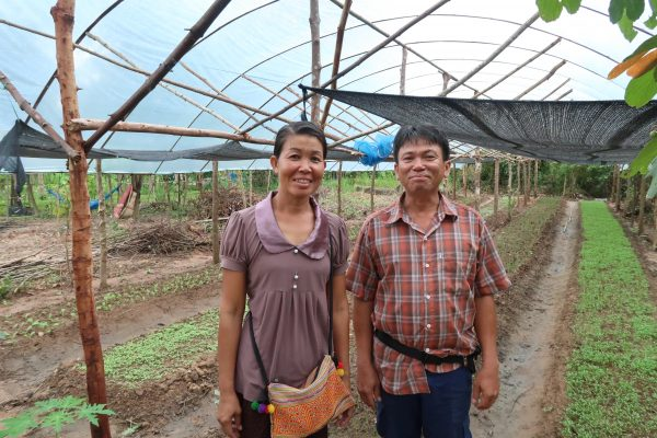 Organic Farming in Laos
