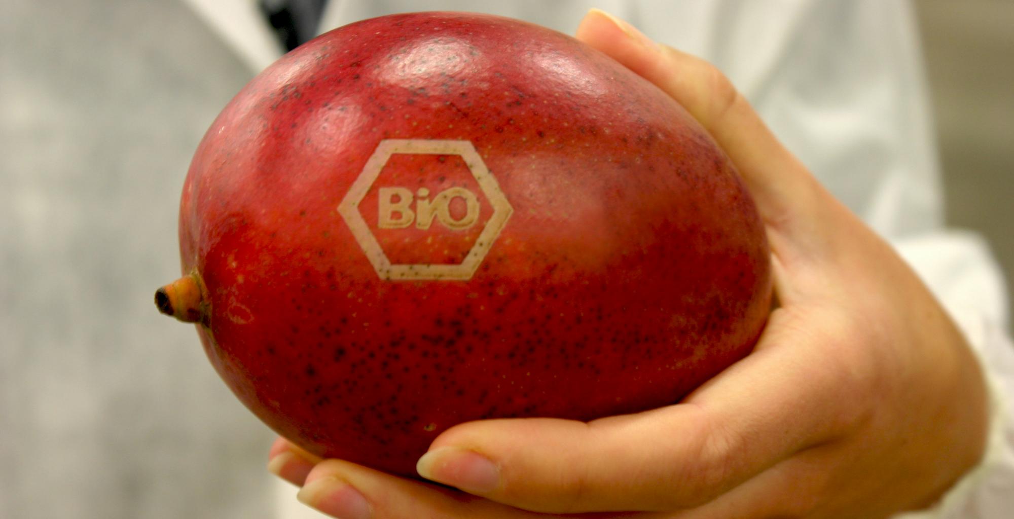 natural-branding