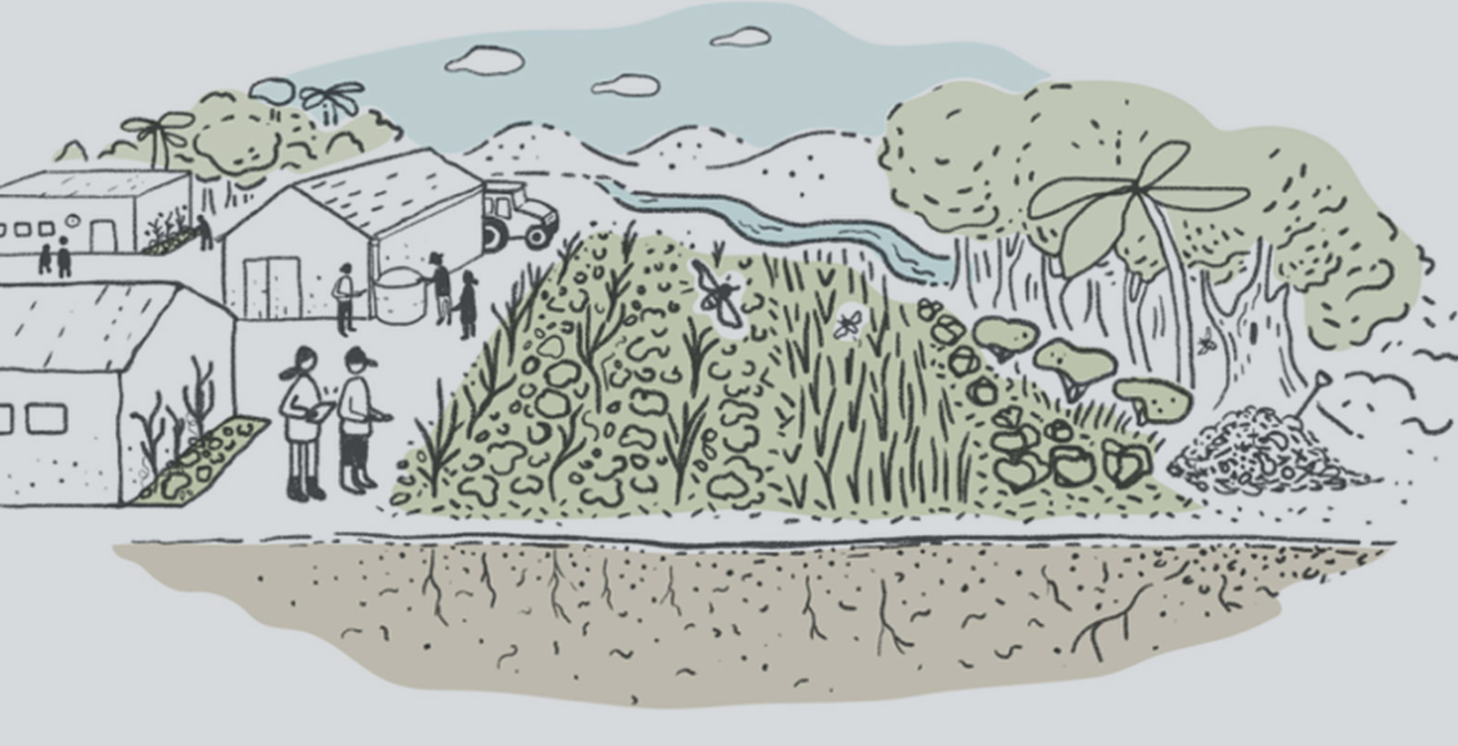 How are Agroecological Farmers Challenging the Industrial Way of Farming?