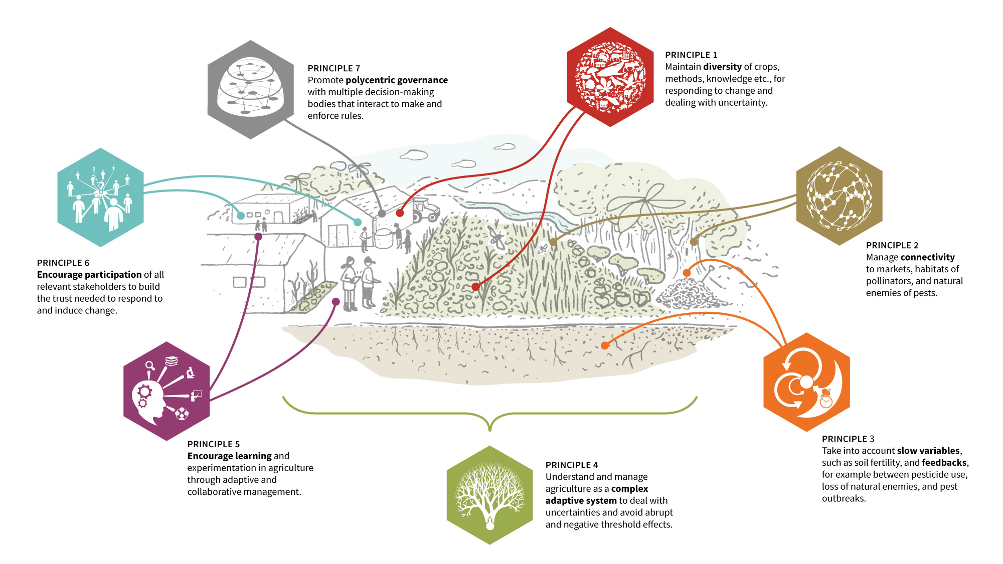 agroecological-farmers