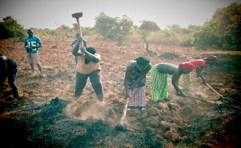raising-women-farmers-africa