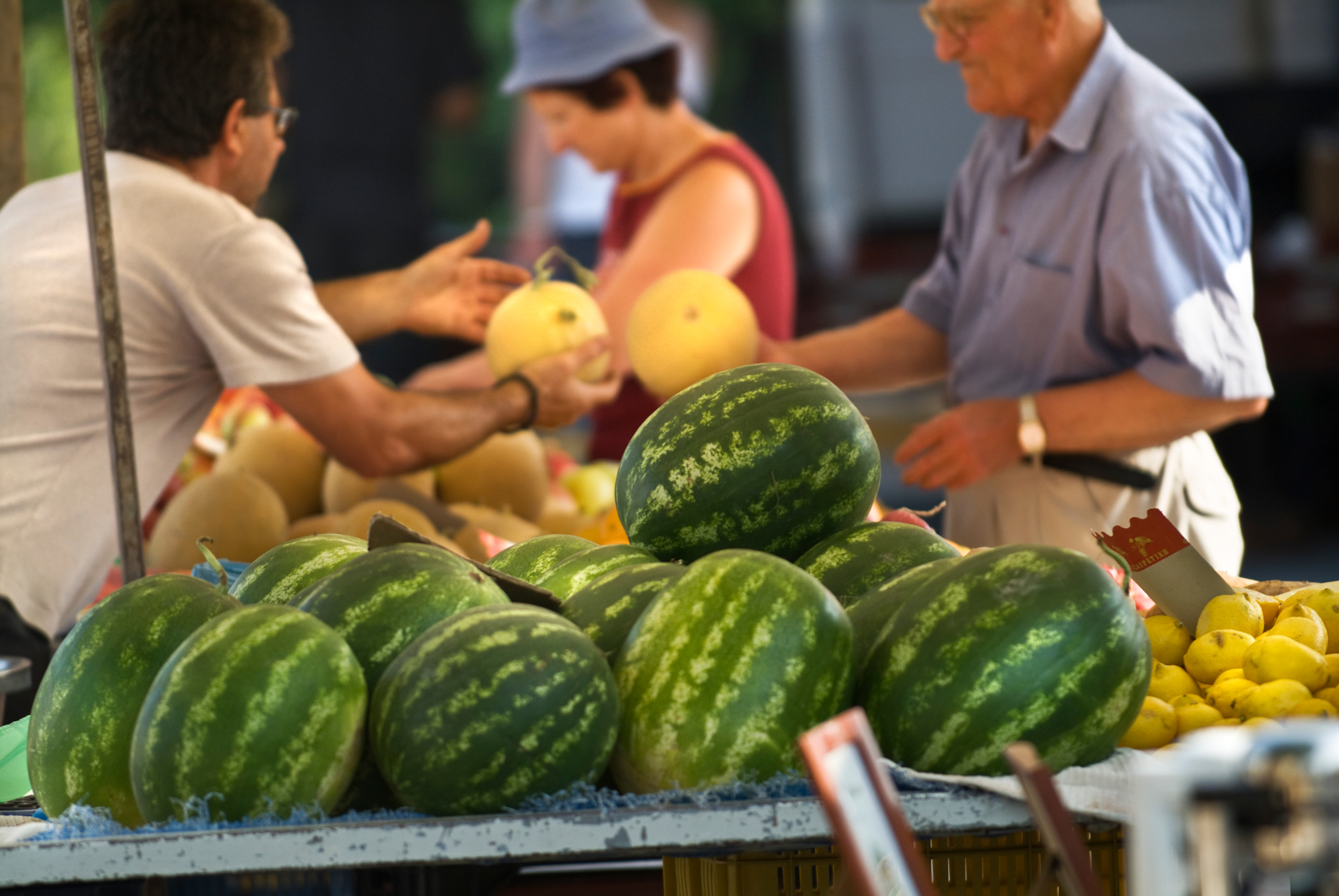 Organic Public Procurement is a Win-Win Scenario for Farmers, Consumers & Public Goods