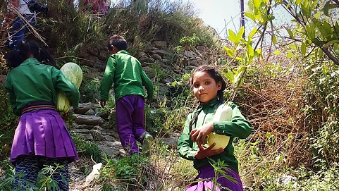One School, One Nutrition Garden – Nutrition Sensitive Agriculture in Nepal