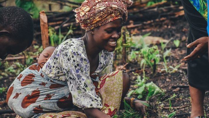 Shaping an Organic Future in Ghana