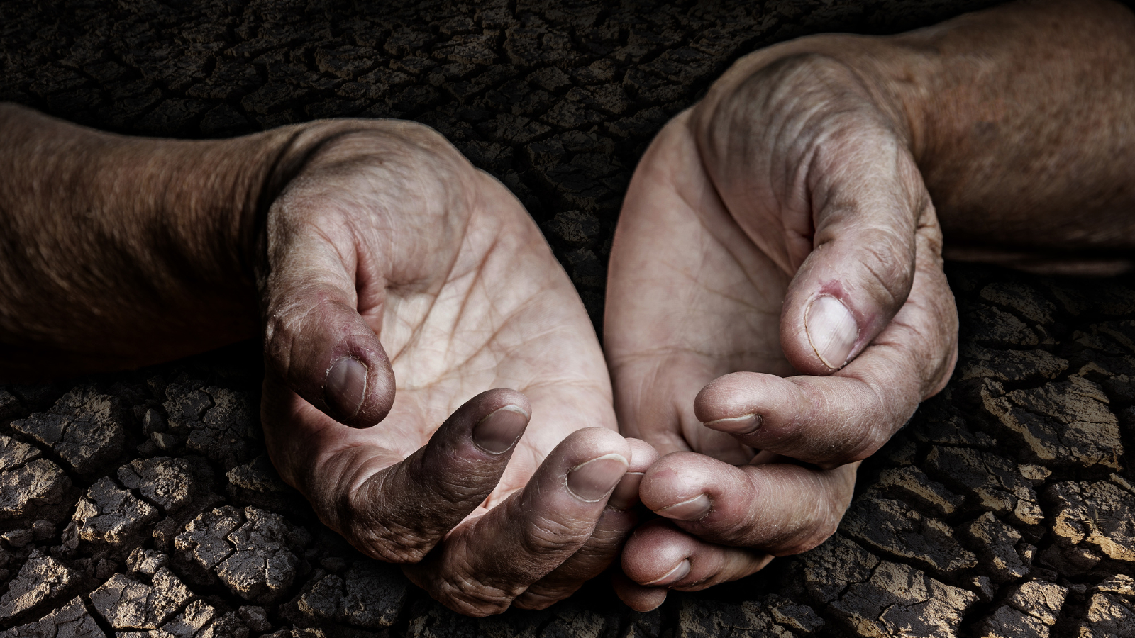 Earth Overshoot Day 2019 is July 29, The Earliest Ever!