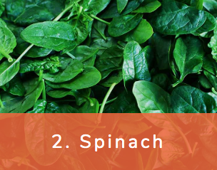 Spinach_avoid-dirty-dozen-chose-organic