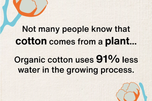 Soil Association Organic Cotton