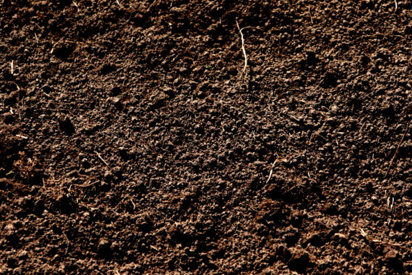 Soil, not dirt