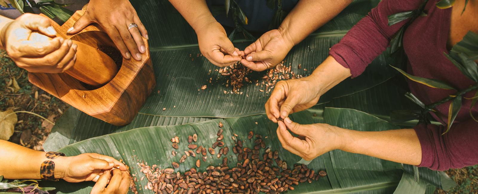 The Bittersweet Life of an Organic Cocoa Farmer in Samoa (Part 2)