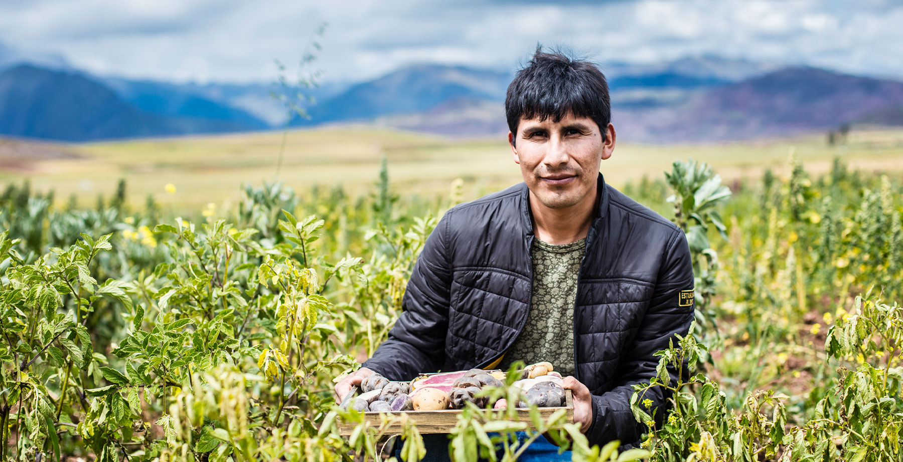 How Peru is Keeping GMOs out of Its Soils