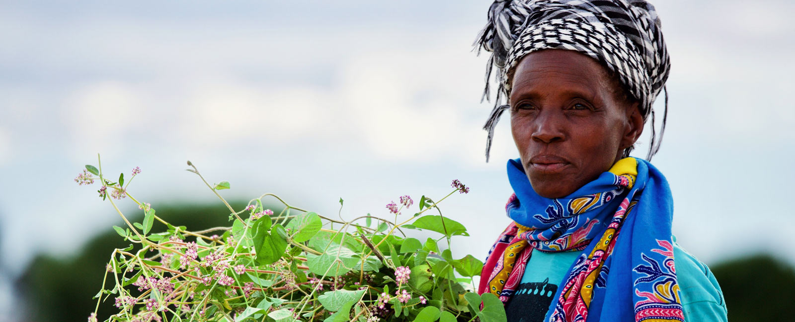 How Organic Leadership is Transforming Agriculture in Namibia!