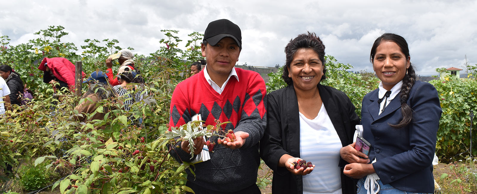 How Organic Agriculture is Transforming Lives in Ecuador