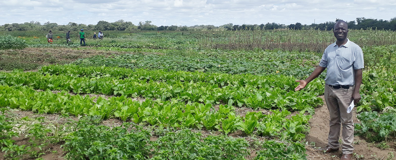 Empowering Organic Leaders to Promote Sustainability in Zambia and Zimbabwe